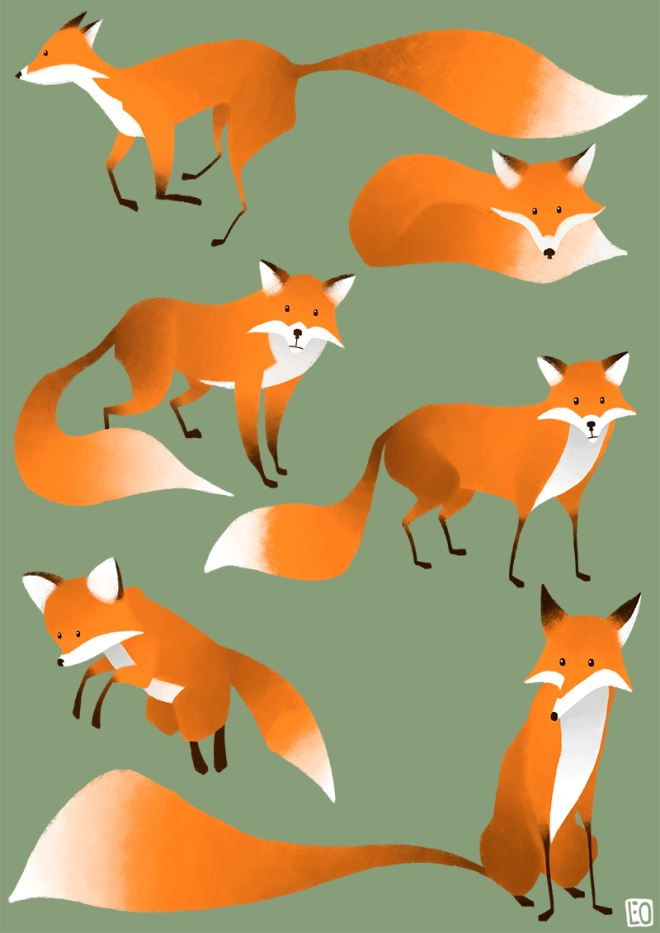 Foxes_01_800px
